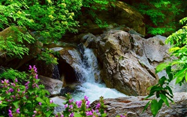 Preview wallpaper Waterfall, rocks, trees, flowers