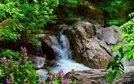 Cascada, rocas, árboles, flores
