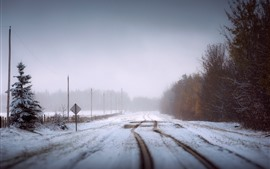 Winter, road, snow, trees, fog