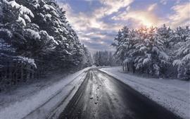 Inverno, árvores, estrada, nuvens, neve