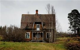 Casa de madeira, árvores, campo