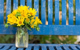 Preview wallpaper Yellow flowers, bottle, bench