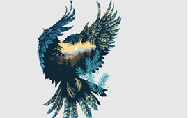 壁紙のプレビュー アートピクチャー、ファルコン、自然、羽、羽