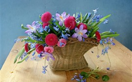 Cesta, flores, margaritas, azafranes