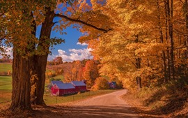 Beautiful autumn, trees, road, village, houses