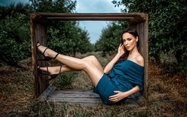 Blue skirt girl, wood box