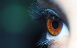 Глаза коричневые, ресницы, макросъемка