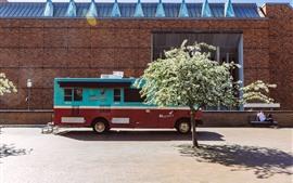 Autobús, árbol de flores, sol, sombra