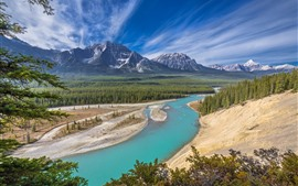 Canada, Alberta, Jasper National Park, Athabasca River, forest, mountains