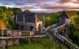 Castelo, escadas, pedras, árvores