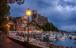 City, dusk, pier, boats, lamps, sea, clouds