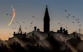 Preview wallpaper City night, houses, silhouette, birds