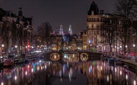 都市の夜、家、木、ライト、川、橋