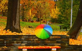 Preview wallpaper Colorful umbrella, trees, leaves, autumn