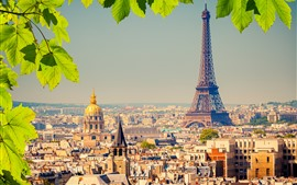 Preview wallpaper Eiffel Tower, city, green leaves, Paris, France