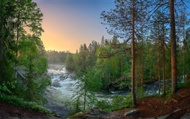 Preview wallpaper Finland, forest, trees, river, nature landscape