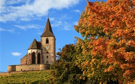 France, church, autumn, maple trees