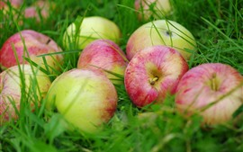 Preview wallpaper Fresh fruit apples in the grass