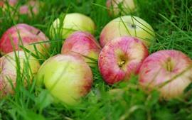 Maçãs de frutas frescas na grama
