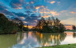 Fritham, Hampshire, Inglaterra, rio, árvores, pôr do sol
