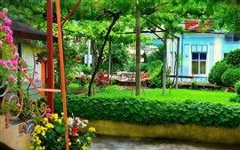 Jardim, videiras, flores, verde, verão