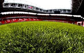 Preview wallpaper Green grass, football stadium