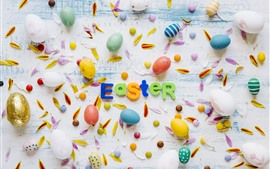 Preview wallpaper Happy Easter, colorful eggs, petals, wood board