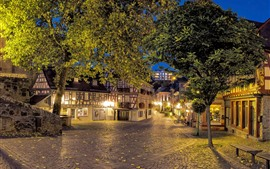 Preview wallpaper Hesse, Germany, trees, street, bench, houses, lights, night