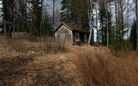 Hut, trees, grass, nature