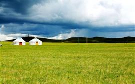 Внутренняя Монголия, луга