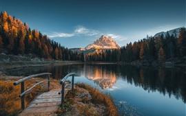 壁紙のプレビュー イタリア、アルプス、木々、湖