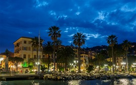 Preview wallpaper Italy, Santa Margherita Ligure, palm trees, night, houses, lights
