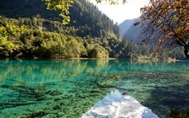 Parque Nacional Jiuzhaigou, montañas, árboles, lago, reflejo de agua