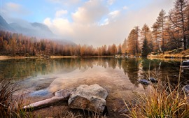 Preview wallpaper Lake, grass, trees, fog, stones, autumn
