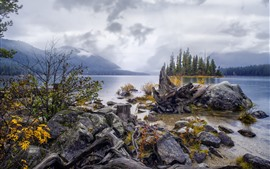 壁紙のプレビュー 湖、島、樹木、森林