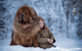 Preview wallpaper Little girl and Tibetan Mastiff, snow, winter