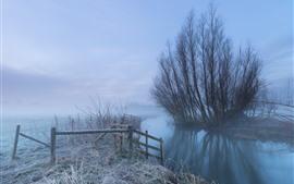 Preview wallpaper Morning, river, trees, fog