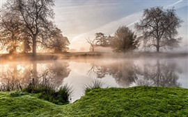 Morning, trees, river, grass, fog, sun rays