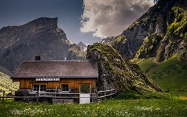 Montanhas, grama, casa de madeira, flores silvestres