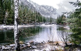 Preview wallpaper Mountains, snow, trees, river, fog, winter
