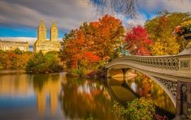 New York, Central Park, bridge, river, trees, autumn