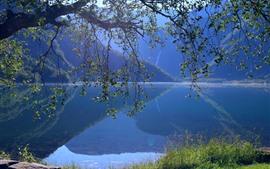미리보기 배경 화면 노르웨이, Eidsvatnet 호수, 물 반사, 나무, 잔디, 산