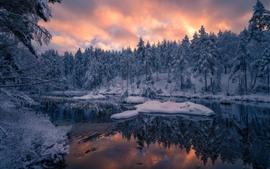 Норвегия, деревья, зима, снег, закат