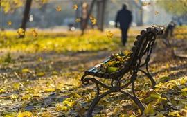 Aperçu fond d'écran Parc, feuilles, banc, automne