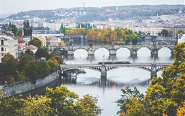 Prague, Czech Republic, Charles bridge, river, city, houses