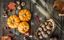 Preview wallpaper Pumpkin, acorns, still life