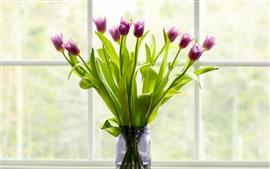 Purple tulips, vase, windowsill