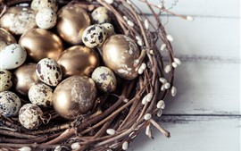 Ovos de codorna, dourado, ninho, Páscoa