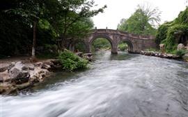 Río, puente de piedra, árboles, rocas