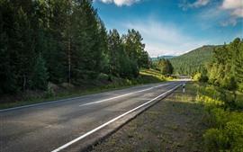 Estrada, floresta, árvores, montanhas